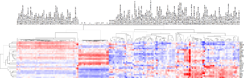 Small expression heatmap